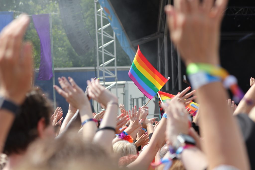 LGBTQ+ flags, view from crowd at a festival